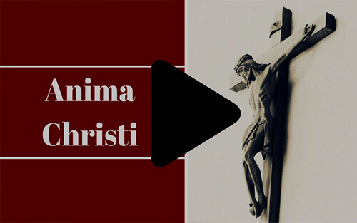 The Anima Christi